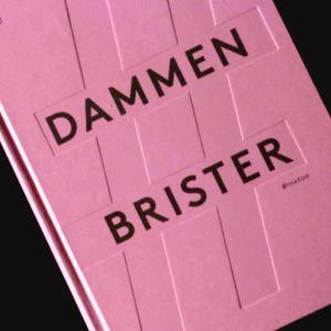 Bokomslaget till Dammen brister
