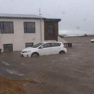 översvämningar i Gardur på Island.