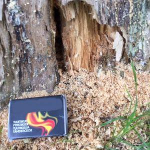 En trädstam med hål och träflis som samlats utanför hålet. En tändsticksask är uppställd bredvid.
