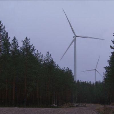 Tuulimyllyjä Honkajoen tuulipuistossa.