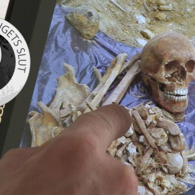 Andra världskrigets slut-bild/18-årig soldats skelett