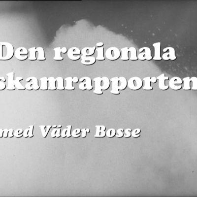 En regional skamrapport för Lasso