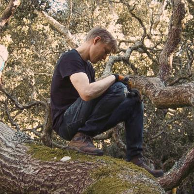 Jyri Engeström rakentaa majaa isoon puuhun lapsensa kanssa.