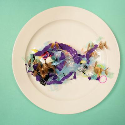Mikroskooppista muoviroskaa on kohta lautasellasi.