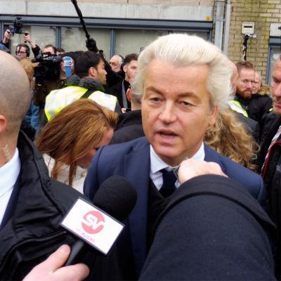 Mittausten mukaan äärioikeistolainen Vapauspuolue saattaa voittaa Hollannin vaalit.