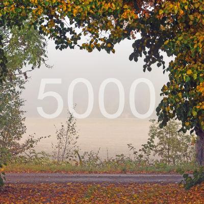 En höstbild med siffran 5000 centrerad
