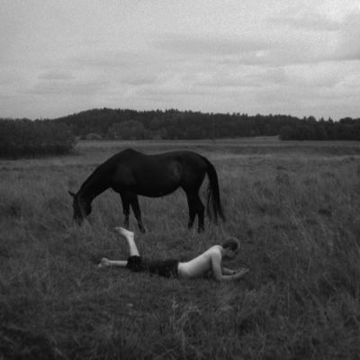 Hevonen ja mies, kuva dokumentista Otto Mäkilä - Havahtuminen