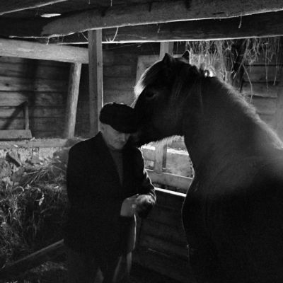 Mies ja hevonen tallissa