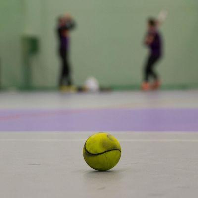Pesäpallo tyhjässä hallissa, pelaajia taustalla.