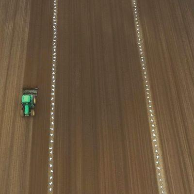 Ilmakuva Tapio Pietilästä ajamassa traktoria perunapellolla.