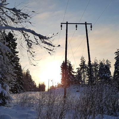 Sähkölinjoja lumisessa metsässä