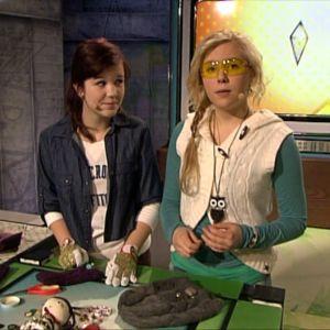 Fanni ja Miina tuunaamassa 2012.