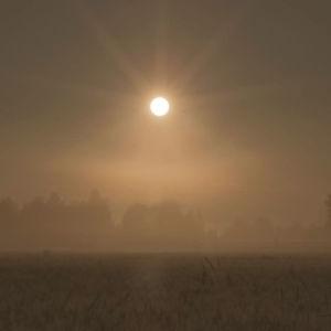 Kuvituskuva Radio Variaation feature-ohjelmaan Lähde. Kuvassa sumuinen peltomaisema.