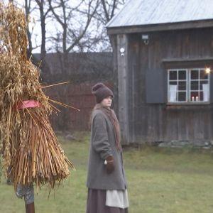 Bondgården på Hertonäs gård.