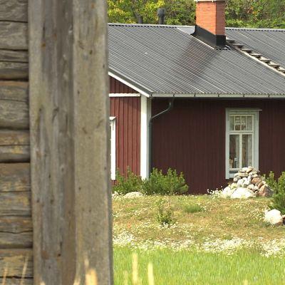 Ett rött hus med vita knutar skymtar bakom en grå lada.