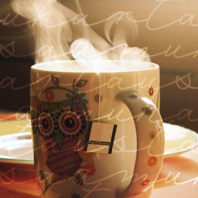 Teekuppi. Hartausohjelmat