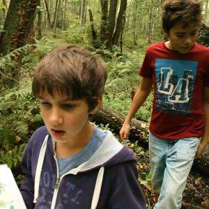 Två pojkar på skogsvandring med bok.