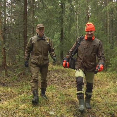 Två män som går i en skog.