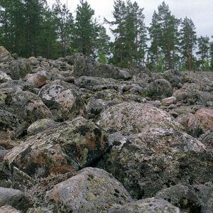 Jääkautinen Pirunpelto