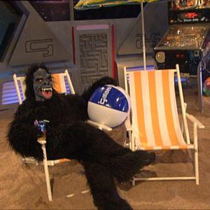 Gorilla ottaa rennosti Galaxin studiossa kesällä 2008.