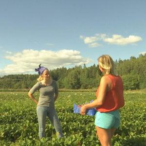 Två kvinnor i ett jordgubbsland.