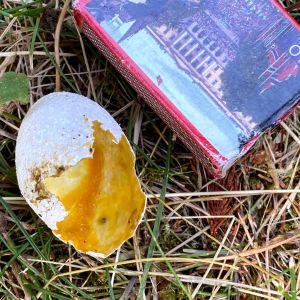 Ett söndrigt ägg bredvid en tändsticksask.
