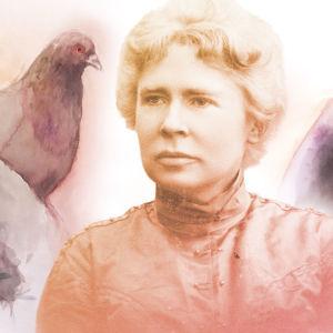 Constance Ullner, taustalla puluja