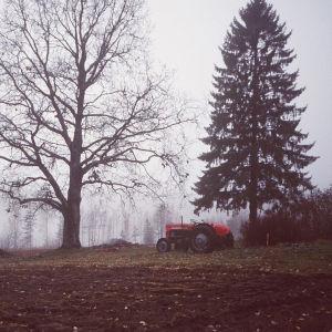 Traktori kahden puun välissä