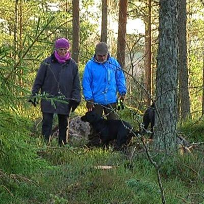 Ira Donner (De gröna) och Raseborgs skogsbruksingenjör Carl-JOhan Jansson diskuterar i skogen vid Karis spånbana.