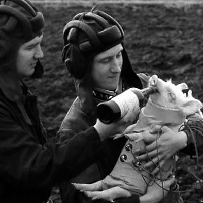 Possulle juotetaan rohkaisua ennen lentoa elokuvassa Ensimmäinen kuunkävijä