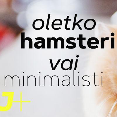 Testi! Oletko hamsteri vai minimalisti?
