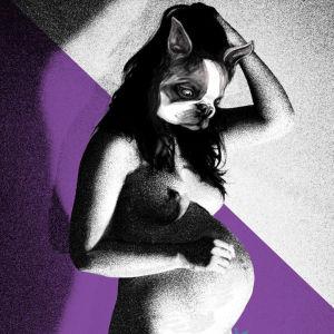 Graafinen kuva jossa raskaana oleva nainen, jolla bostoninterrierin pää