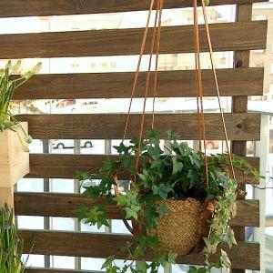 Växter på en balkong.