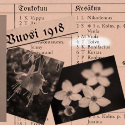 Alma Kuula. Vuoden 1918 almanakka.