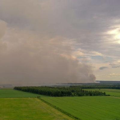 Metsäpalo Muhoksella