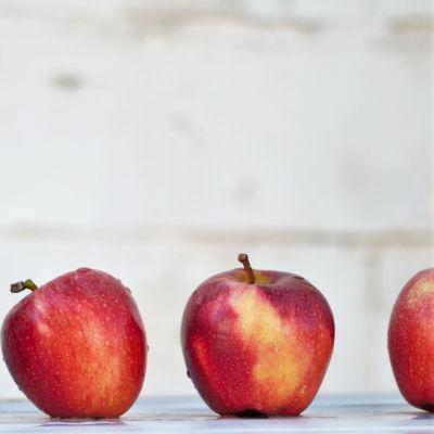 Omenat rivissä