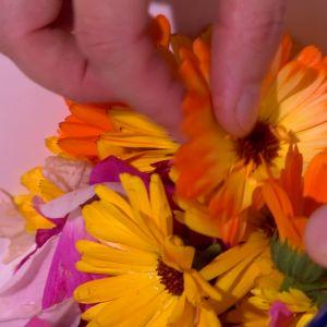 Fyll karet med blommor.