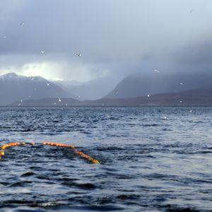 Fiskebåten Marinas räktrål i Lyngenfjorden