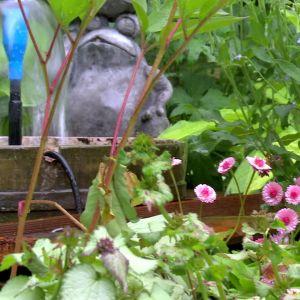 En liten oas mitt trädgården ger stämning.