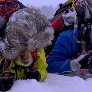 Isdubbarna slås i isen nära kroppen. Då är det enklare att dra sig upp.