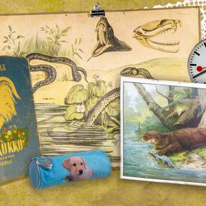 Kuvassa on vanha aapinen, kuvatauluja, penaali ja kello