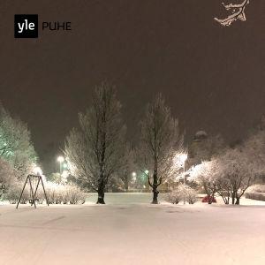 Kuvassa lumimaisema.
