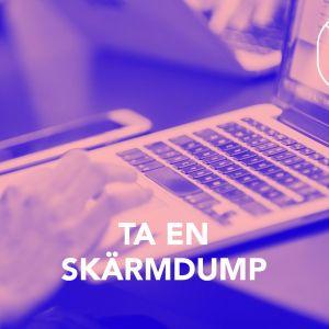 En bild med texten; Ta en skärmdump.