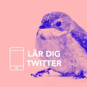 Så fungerar twitter