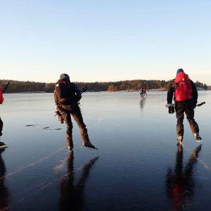 Kuvassa retkiluistelijoita jäällä.