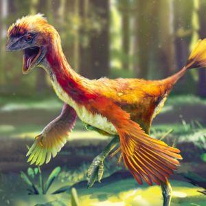 Miten kehittyivät luonnonhistorian kenties myyttisimmät eläimet?