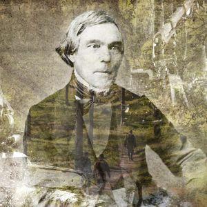 Elias Lönnrot hakkuukone ja moottorisaha