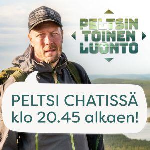 Mikko Peltola tunturissa, kuvassa puhekupla, jossa lukee Peltsi chatissä klo 20.45 alkaen!
