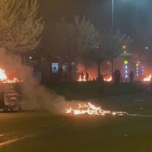 Bilar antändes av bensinbomber i Nordirland