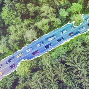 Kuvituskuva: yläkulmasta kuvattu autotie, joka kulkee metsän halki.